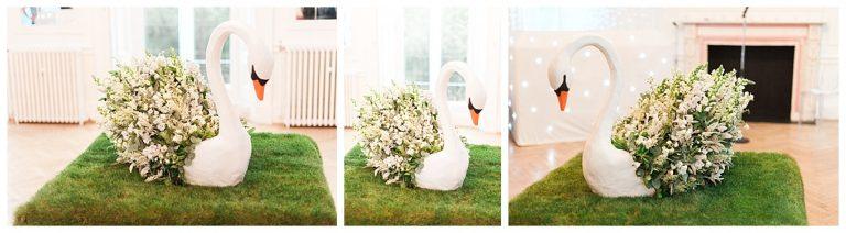 Swan-wow-Grass