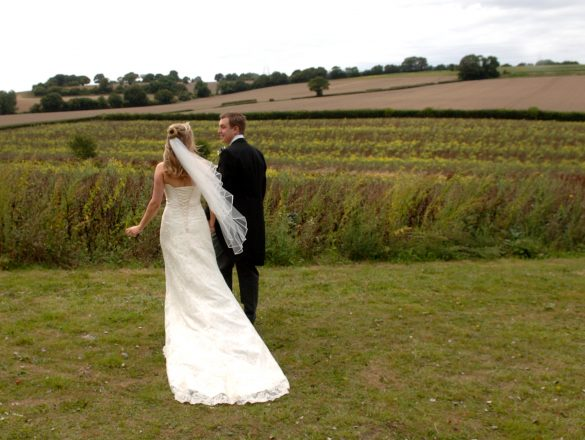 Introduce Bespoke and Beyond Weddings and Events